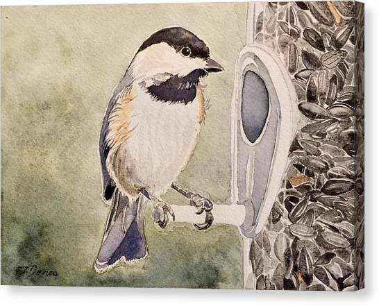 Shades Of Black Capped Chickadee Canvas Print