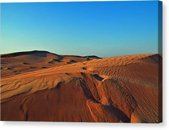 Shades Of Sand Canvas Print