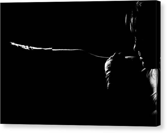 Shadow Boxing Canvas Print