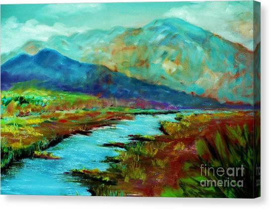 Shadow Brook Canvas Print