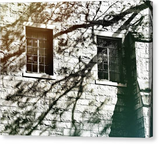 Shadow Days Canvas Print by JAMART Photography