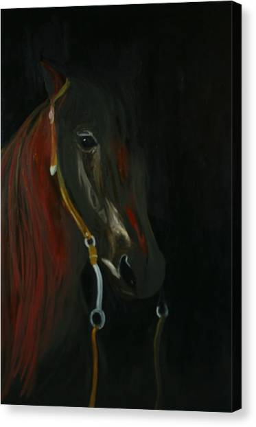 Shadow Canvas Print by Karen Rester