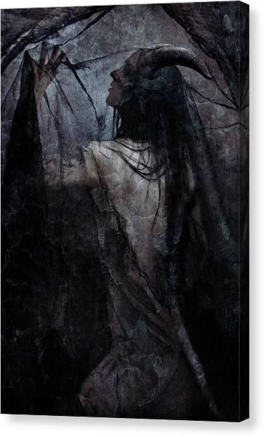 Sensual Canvas Print - Shadow Veil by Cambion Art