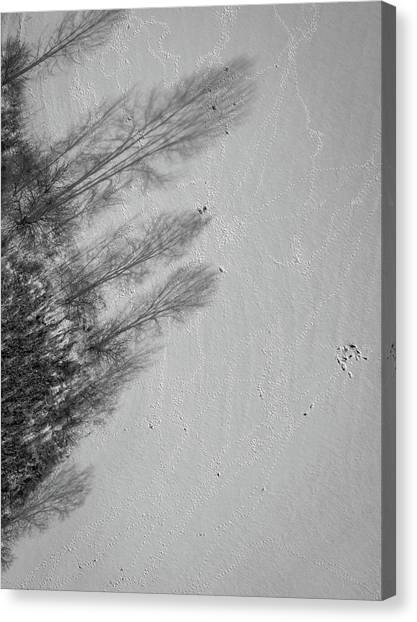 Shadow Walkers Canvas Print