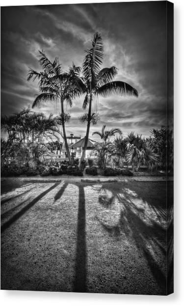 Florida Canvas Print - Shadow Waltz by Evelina Kremsdorf