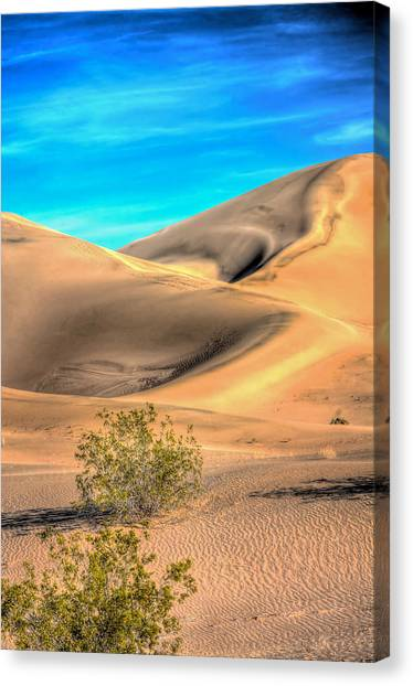 Shadows In The Sand Canvas Print