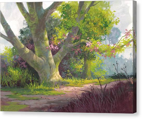 Magenta Canvas Print - Shady Oasis by Michael Humphries