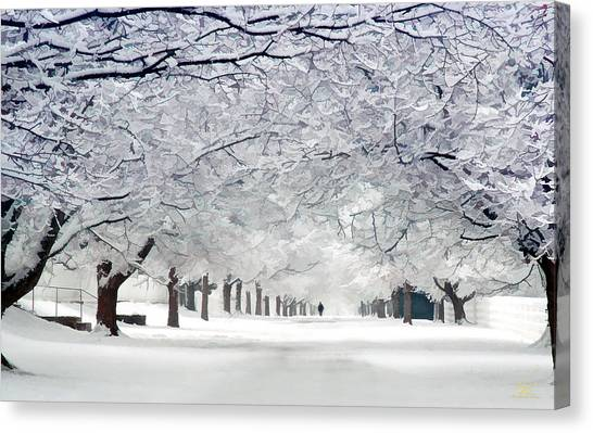 Shaker Winter Walkway Canvas Print