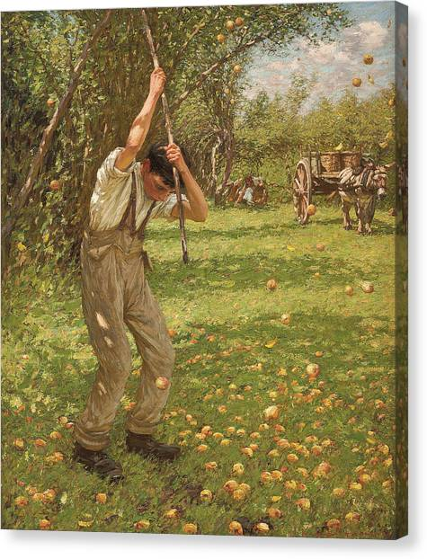 Cider Canvas Print - Shaking Down Cider Apples  by Henry Herbert La Thangue