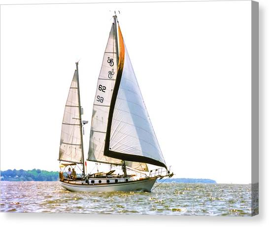 Shannon 38 Kittiwake On Chesapeake Bay Canvas Print