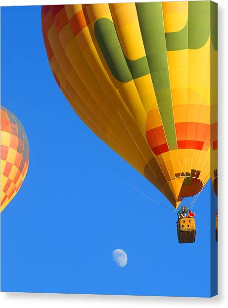 Sharing The Sky Canvas Print