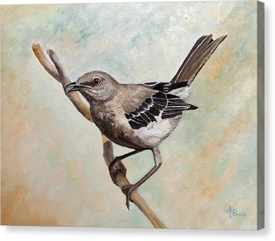 Mockingbirds Canvas Print - Sharp-eyed Mockingbird by Angeles M Pomata