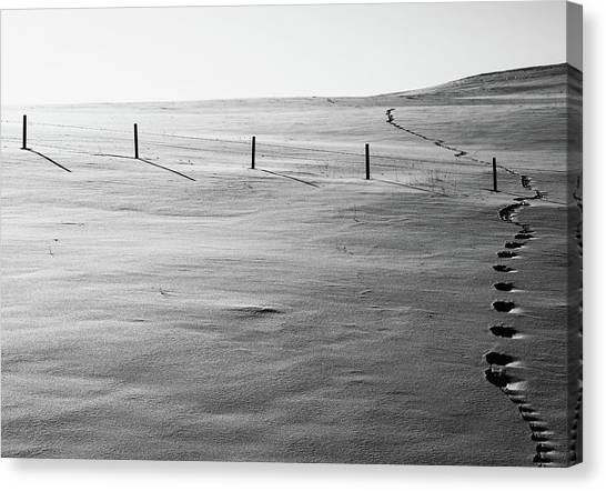 Canvas Print - She Did Not Follow by The Artist Project