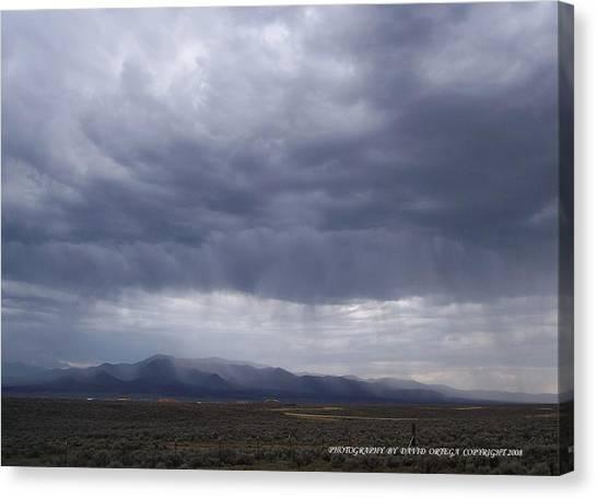 Shear Rainfall Canvas Print by David Ortega