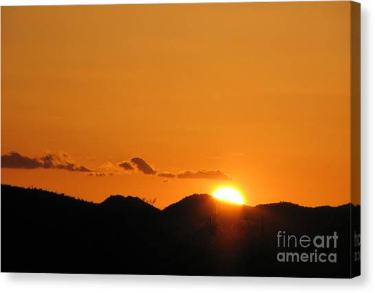 Shed Light On Canvas Print