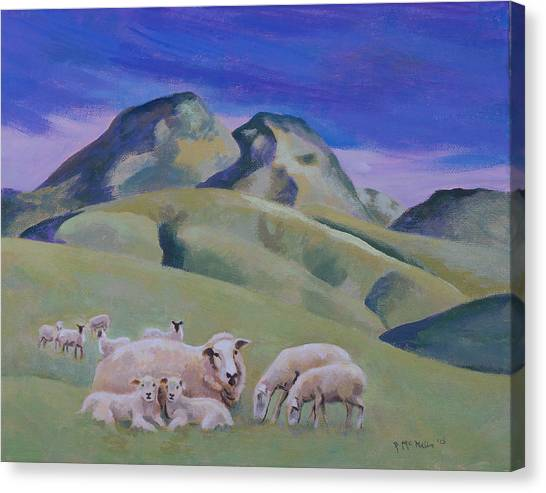 Sheep At Sutter Buttes Canvas Print