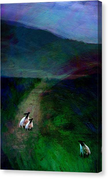 Sheep On The Moor Canvas Print