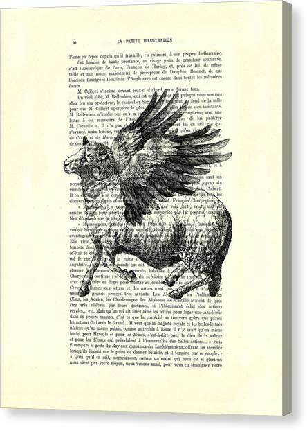 Winged Canvas Print - Sheep With Angel Wings Black And White  by Madame Memento