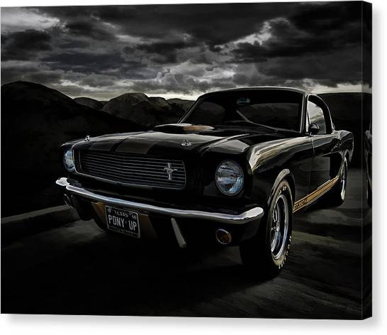 Ponies Canvas Print - Shelby Gt350h Rent-a-racer by Douglas Pittman