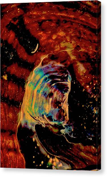 Shell Space Canvas Print