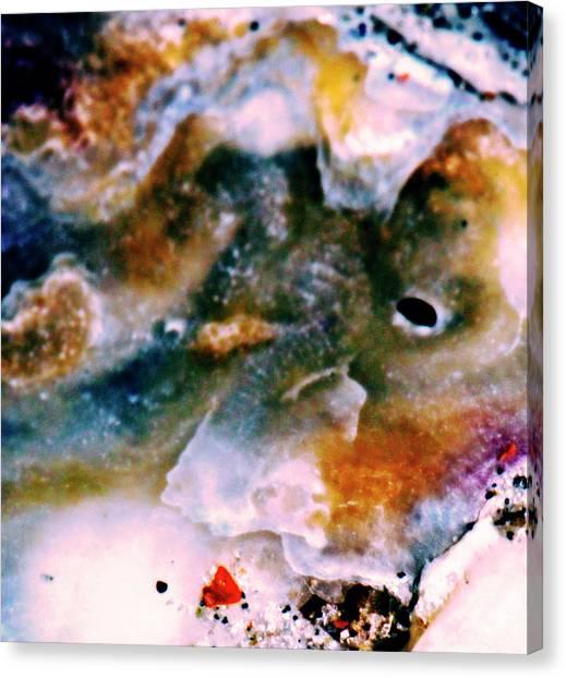 Shell Treasure Story Canvas Print