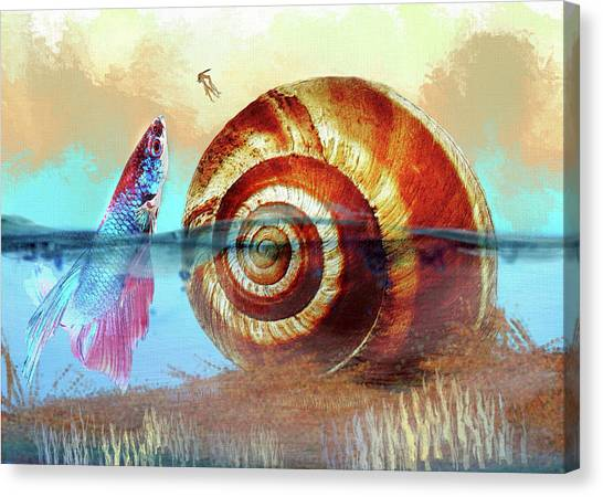 Shell Fish Canvas Print