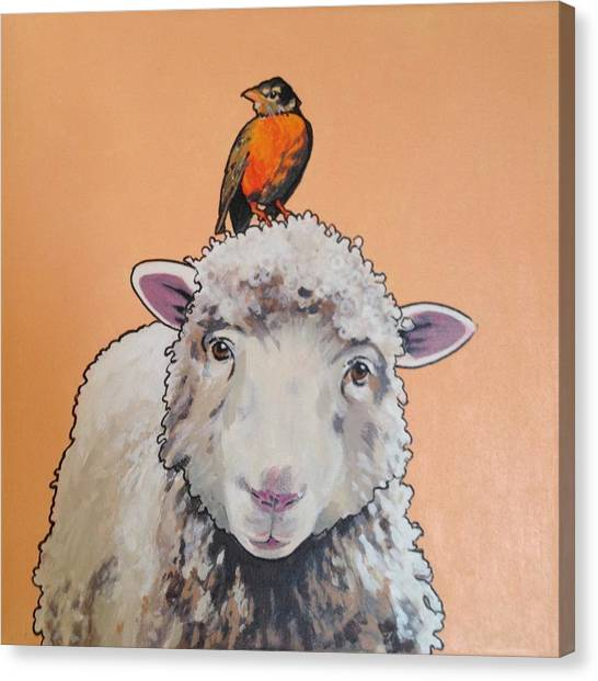 Shelley The Sheep Canvas Print