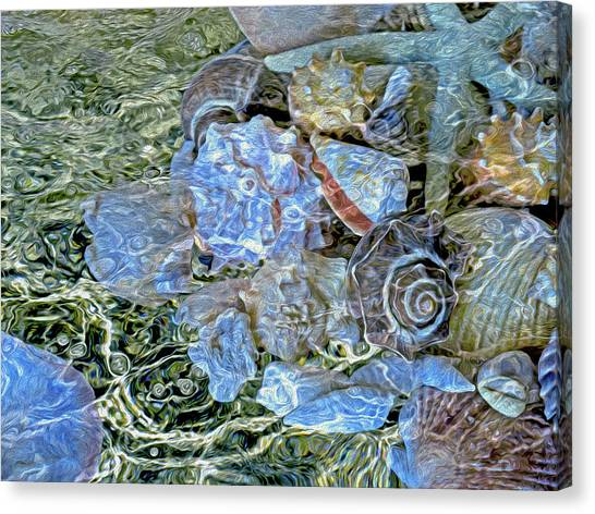 Shells Underwater 20 Canvas Print