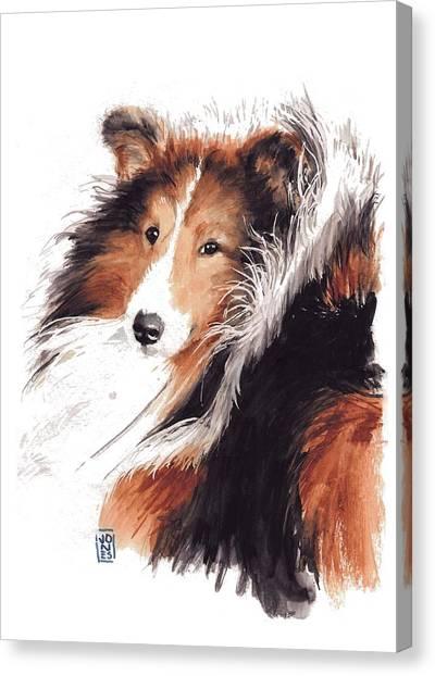 Watercolor Pet Portraits Canvas Print - Sheltie by Debra Jones