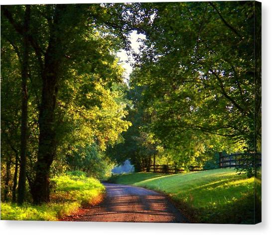 Shenandoah Summer Canvas Print