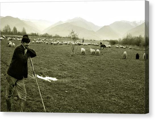 Shepherd In The Carpathians Mountains Canvas Print
