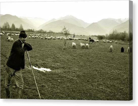 Shepherd In The Carpathians Mountains Canvas Print