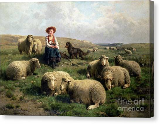 Meadow Canvas Print - Shepherdess With Sheep In A Landscape by C Leemputten and T Gerard