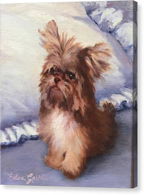 Sherry's Coco Canvas Print