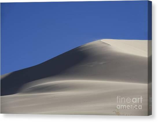Shifting Dunes Canvas Print by Ronald Hoggard