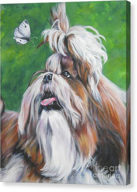 Shih Tzus Canvas Print - Shih Tzu And Butterfly by Lee Ann Shepard
