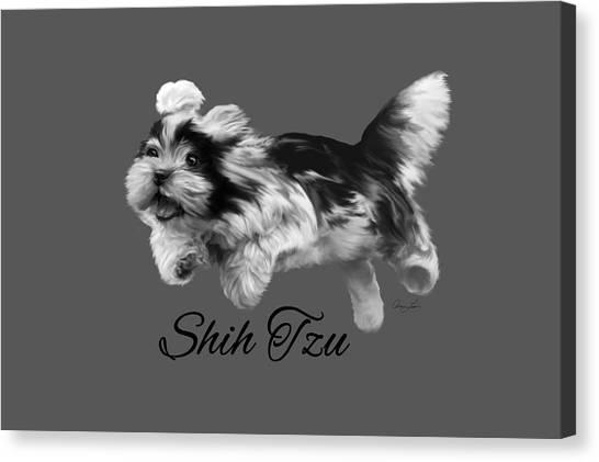 Shih Tzu Canvas Print