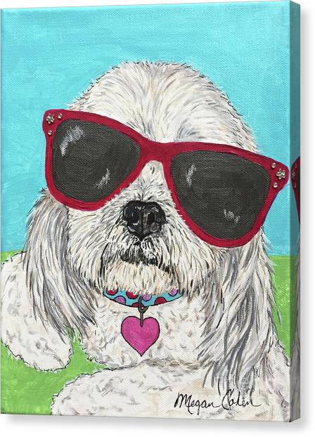 Canvas Print - Shih Tzu Diva by Megan Cohen