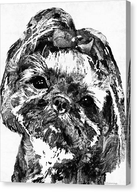 Shih Tzus Canvas Print - Shih Tzu Dog Art In Black And White By Sharon Cummings by Sharon Cummings