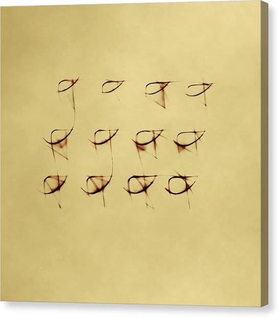 Canvas Print featuring the photograph Shining  Twelve by Dutch Bieber