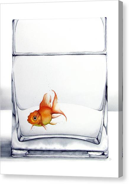 Goldfish Canvas Print - Shiny by Christina Meeusen