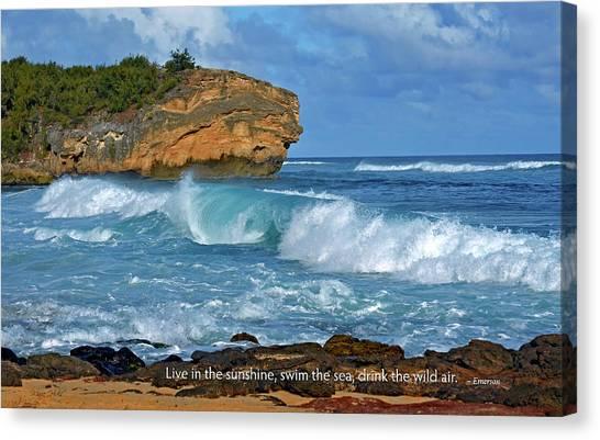 Shipwreck Beach Shorebreaks 2 Canvas Print