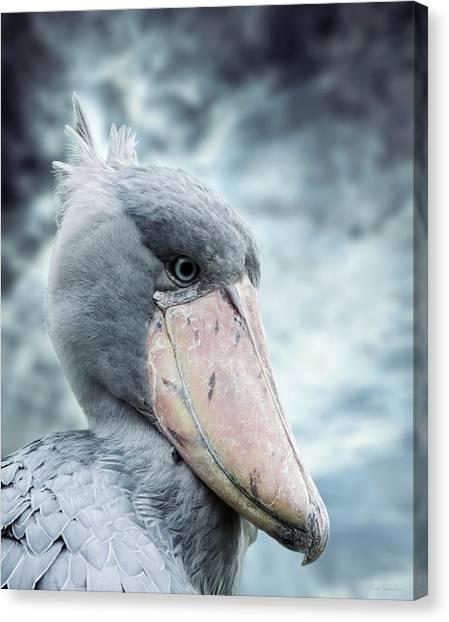 Storks Canvas Print - Shoebill by Wim Lanclus