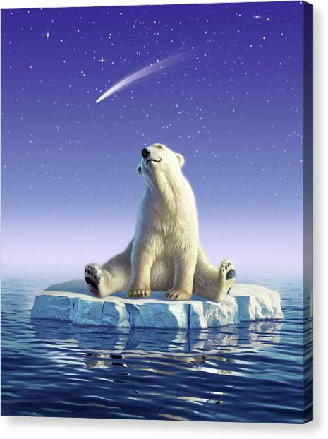 Polar Bear Canvas Print - Shooting Star by Jerry LoFaro