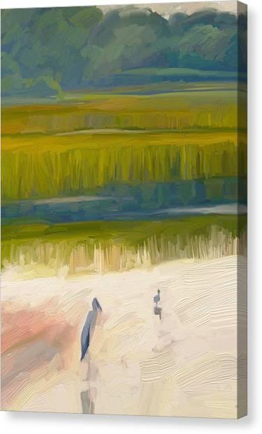 Shore Birds Canvas Print by Scott Waters