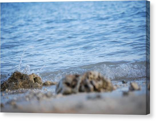 Shore View Canvas Print by Lakida Mcnair