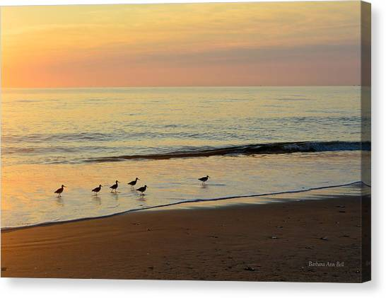 Canvas Print featuring the photograph Shorebirds 9/4/17 by Barbara Ann Bell