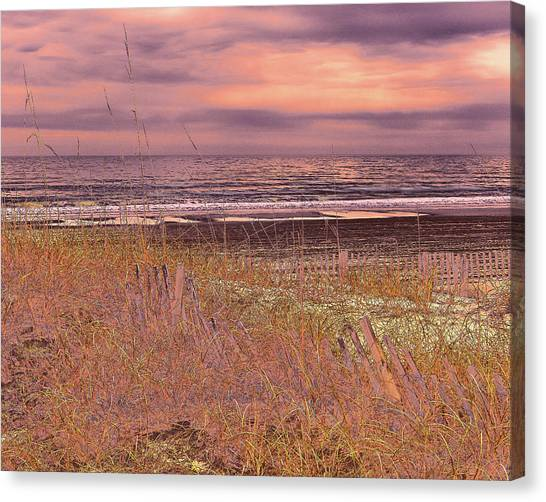 Shores Of Life Canvas Print