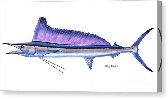 Spearfishing Canvas Print - Shortbill Spearfish  by Carey Chen