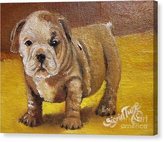 Chloe The   Flying Lamb Productions      Shortstop The English Bulldog Pup Canvas Print